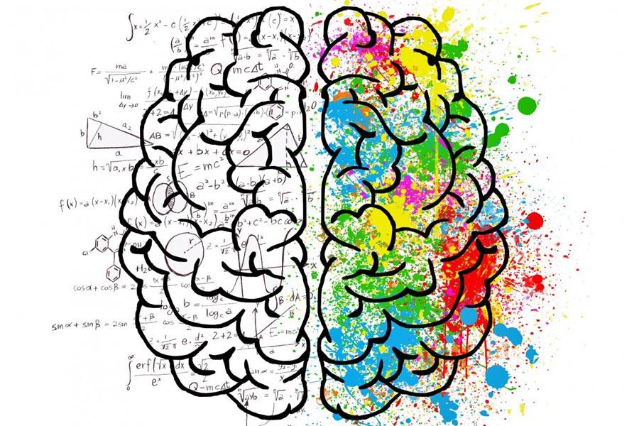 L'action du shiatsu sur le cerveau - Le shiatsu agit-il sur le cerveau ?