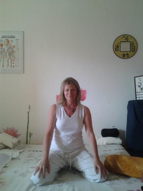 Brigitte Nicieja : infos, localisation, contacts... pour ce centre de shiatsu